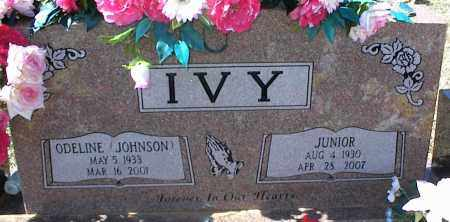 JOHNSON IVY, ODELINE - Stone County, Arkansas | ODELINE JOHNSON IVY - Arkansas Gravestone Photos