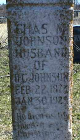 JOHNSON, CHAS M. - Stone County, Arkansas | CHAS M. JOHNSON - Arkansas Gravestone Photos
