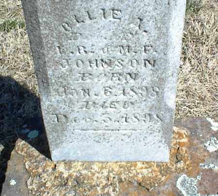 JOHNSON, OLLIE A. - Stone County, Arkansas | OLLIE A. JOHNSON - Arkansas Gravestone Photos