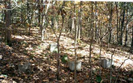 LAMPE, CEMETERY - Stone County, Arkansas | CEMETERY LAMPE - Arkansas Gravestone Photos