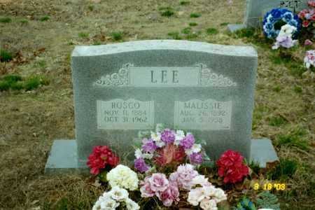 LEE, MALISSIE - Stone County, Arkansas | MALISSIE LEE - Arkansas Gravestone Photos
