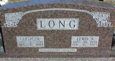 LONG, LEWIS A. - Stone County, Arkansas | LEWIS A. LONG - Arkansas Gravestone Photos