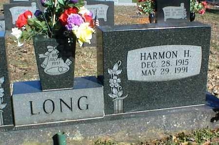 LONG, HARMON H. - Stone County, Arkansas | HARMON H. LONG - Arkansas Gravestone Photos