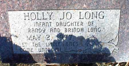 LONG, HOLLY JO - Stone County, Arkansas | HOLLY JO LONG - Arkansas Gravestone Photos