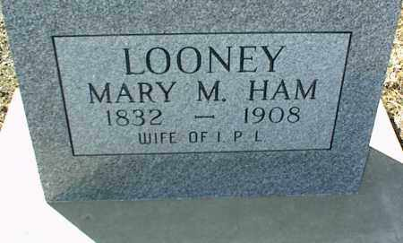 LOONEY, MARY M. - Stone County, Arkansas | MARY M. LOONEY - Arkansas Gravestone Photos