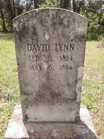 LYNN, DAVID - Stone County, Arkansas | DAVID LYNN - Arkansas Gravestone Photos