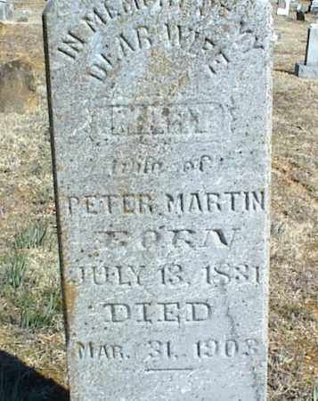 MARTIN, MARY - Stone County, Arkansas | MARY MARTIN - Arkansas Gravestone Photos