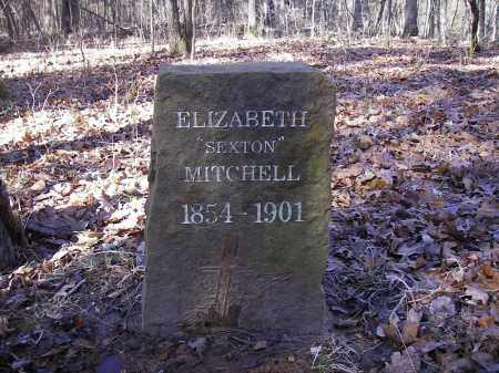 MITCHELL, ELIZABETH - Stone County, Arkansas | ELIZABETH MITCHELL - Arkansas Gravestone Photos