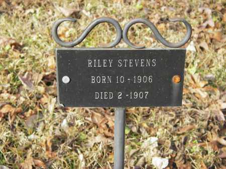 STEVENS, RILEY - Stone County, Arkansas | RILEY STEVENS - Arkansas Gravestone Photos