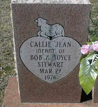 STEWART, CALLIE JEAN - Stone County, Arkansas | CALLIE JEAN STEWART - Arkansas Gravestone Photos