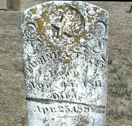 TALLY, LUCINDA - Stone County, Arkansas | LUCINDA TALLY - Arkansas Gravestone Photos