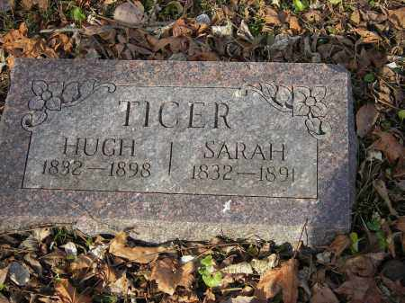 TICER, HUGH - Stone County, Arkansas | HUGH TICER - Arkansas Gravestone Photos