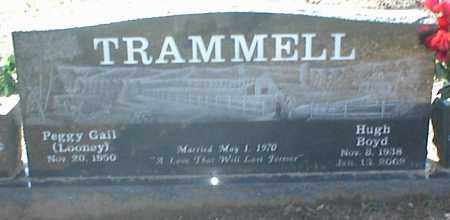 TRAMMELL, HUGH BOYD - Stone County, Arkansas | HUGH BOYD TRAMMELL - Arkansas Gravestone Photos
