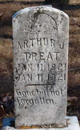 TREAT, ARTHUR J. - Stone County, Arkansas | ARTHUR J. TREAT - Arkansas Gravestone Photos