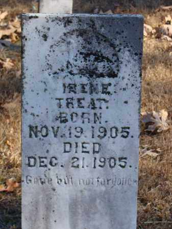 TREAT, IRENE - Stone County, Arkansas | IRENE TREAT - Arkansas Gravestone Photos