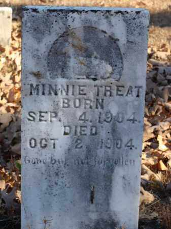 TREAT, MINNIE - Stone County, Arkansas | MINNIE TREAT - Arkansas Gravestone Photos