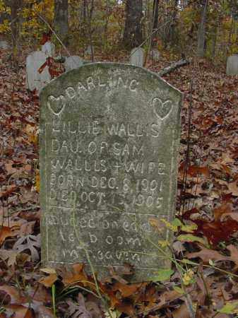 WALLIS, LILLIE - Stone County, Arkansas | LILLIE WALLIS - Arkansas Gravestone Photos