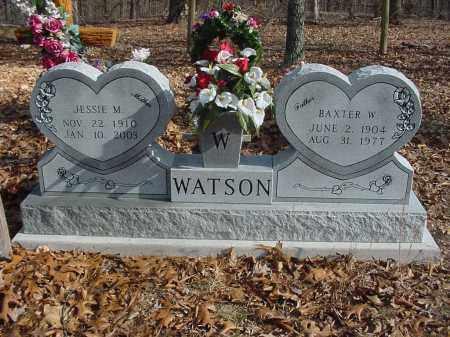 WATSON, JESSIE M. - Stone County, Arkansas | JESSIE M. WATSON - Arkansas Gravestone Photos