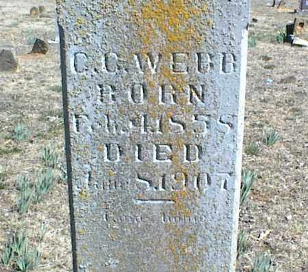 WEBB, C. C. - Stone County, Arkansas | C. C. WEBB - Arkansas Gravestone Photos