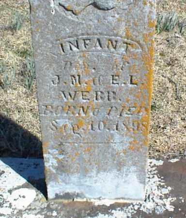 WEBB, INFANT DAUGHTER - Stone County, Arkansas   INFANT DAUGHTER WEBB - Arkansas Gravestone Photos