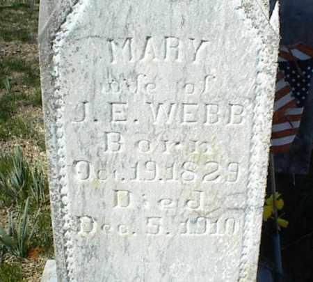 WEBB, MARY - Stone County, Arkansas | MARY WEBB - Arkansas Gravestone Photos