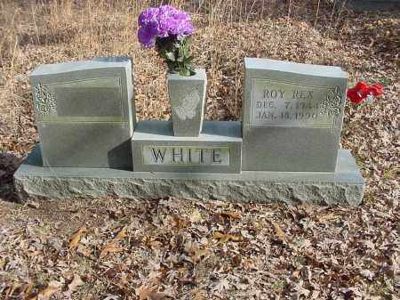 WHITE, ROY - Stone County, Arkansas | ROY WHITE - Arkansas Gravestone Photos