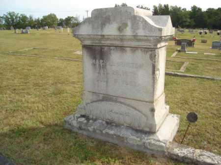 WINSTON, MARY J. - Stone County, Arkansas | MARY J. WINSTON - Arkansas Gravestone Photos