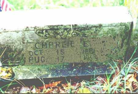 YOUNGER, CHARLES EDWARD - Stone County, Arkansas | CHARLES EDWARD YOUNGER - Arkansas Gravestone Photos