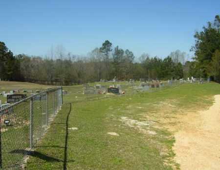 *BETHEL CEMETERY-MT HOLLY,  - Union County, Arkansas |  *BETHEL CEMETERY-MT HOLLY - Arkansas Gravestone Photos