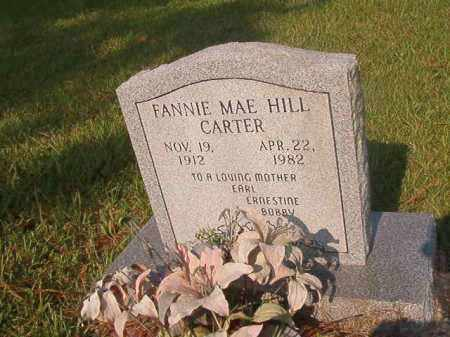 HILL CARTER, FANNIE MAE - Union County, Arkansas | FANNIE MAE HILL CARTER - Arkansas Gravestone Photos