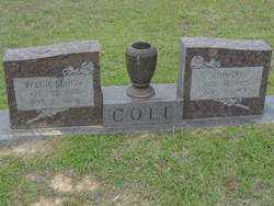 COLE, REECIE - Union County, Arkansas | REECIE COLE - Arkansas Gravestone Photos
