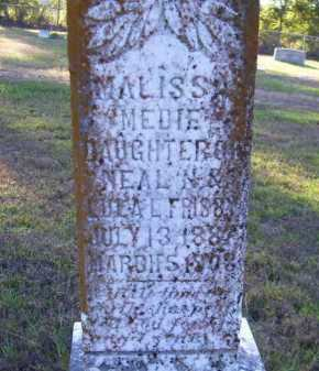 FRISBY, MELISSA MEDDIE (CLOSEUP) - Union County, Arkansas | MELISSA MEDDIE (CLOSEUP) FRISBY - Arkansas Gravestone Photos