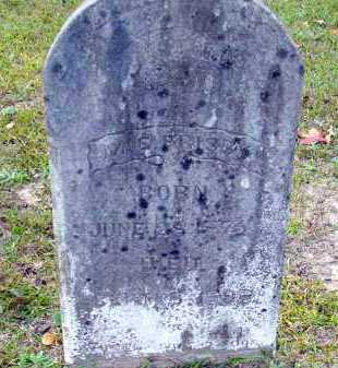 FRISBY, M E - Union County, Arkansas | M E FRISBY - Arkansas Gravestone Photos