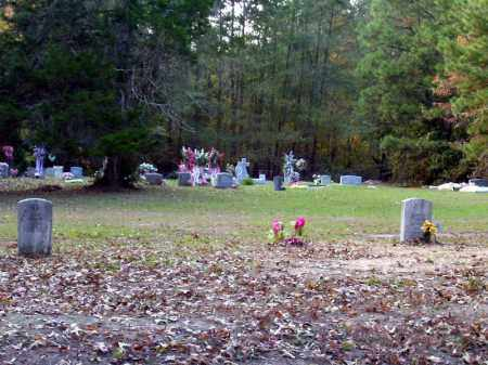 *GILL CEMETERY OVERVIEW,  - Union County, Arkansas |  *GILL CEMETERY OVERVIEW - Arkansas Gravestone Photos