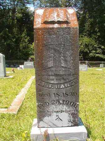HANEY, M J - Union County, Arkansas | M J HANEY - Arkansas Gravestone Photos