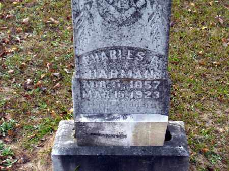 HARMAN, CHARLES E - Union County, Arkansas | CHARLES E HARMAN - Arkansas Gravestone Photos