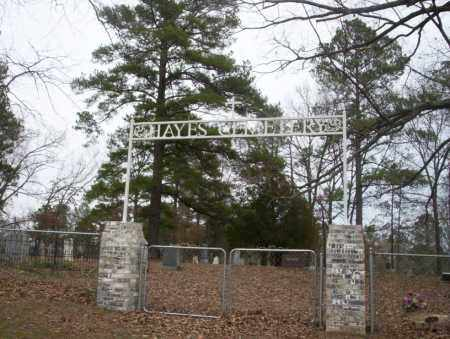 *HAYES CEMETERY, GATE - Union County, Arkansas | GATE *HAYES CEMETERY - Arkansas Gravestone Photos