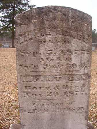 HUDSON, LILLIE AGNES - Union County, Arkansas | LILLIE AGNES HUDSON - Arkansas Gravestone Photos