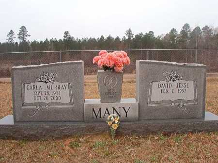 MURRAY MANY, CARLA - Union County, Arkansas | CARLA MURRAY MANY - Arkansas Gravestone Photos