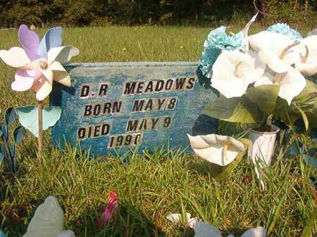 MEADOWS, D R - Union County, Arkansas | D R MEADOWS - Arkansas Gravestone Photos