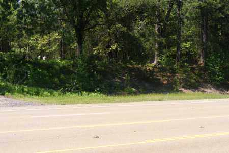 *MEEKS CEMETERY OFF HIGHWAY,  - Union County, Arkansas |  *MEEKS CEMETERY OFF HIGHWAY - Arkansas Gravestone Photos