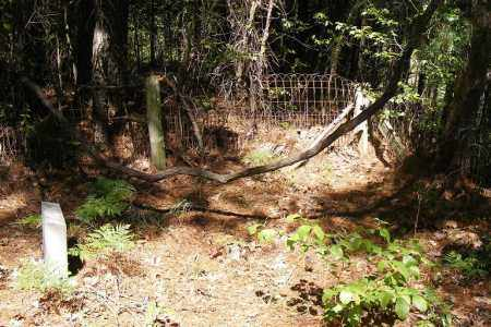 *MEEKS CEMETERY GATE,  - Union County, Arkansas |  *MEEKS CEMETERY GATE - Arkansas Gravestone Photos
