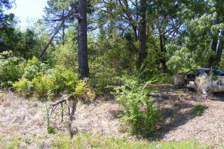 *MEEKS CEMETERY ROAD,  - Union County, Arkansas |  *MEEKS CEMETERY ROAD - Arkansas Gravestone Photos