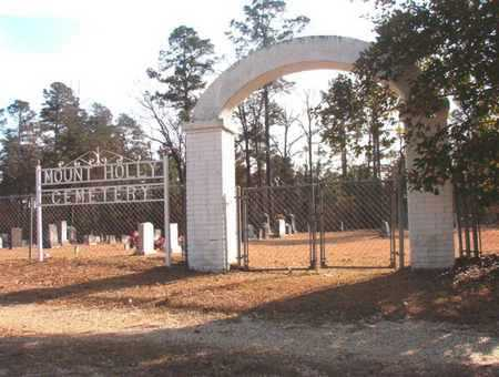 *MOUNT HOLLY CEMETERY, GATE - Union County, Arkansas | GATE *MOUNT HOLLY CEMETERY - Arkansas Gravestone Photos