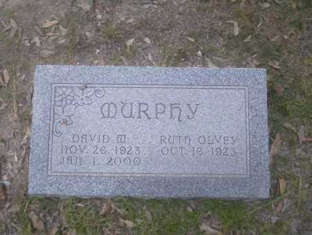 MURPHY, DAVID W - Union County, Arkansas | DAVID W MURPHY - Arkansas Gravestone Photos