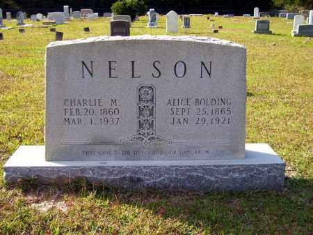 BOLDING NELSON, ALICE - Union County, Arkansas | ALICE BOLDING NELSON - Arkansas Gravestone Photos
