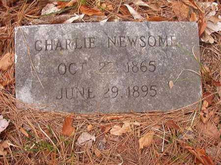 NEWSOME, CHARLIE - Union County, Arkansas | CHARLIE NEWSOME - Arkansas Gravestone Photos