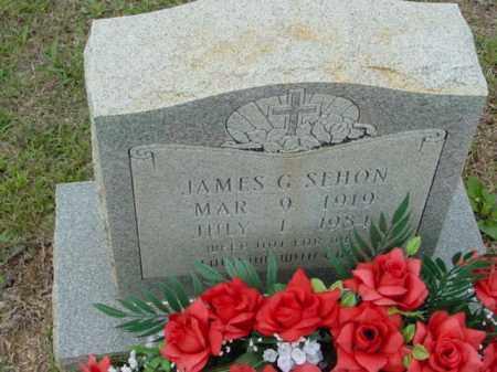 SEHON, JAMES - Union County, Arkansas | JAMES SEHON - Arkansas Gravestone Photos