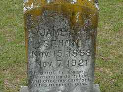 SEHON, JAMES - Union County, Arkansas | JAMES SEHON - Arkansas Gravestone Photos