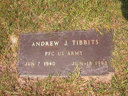 TIBBITS (VETERAN), ANDREW J - Union County, Arkansas | ANDREW J TIBBITS (VETERAN) - Arkansas Gravestone Photos